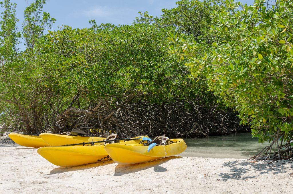 Bonaire kajak